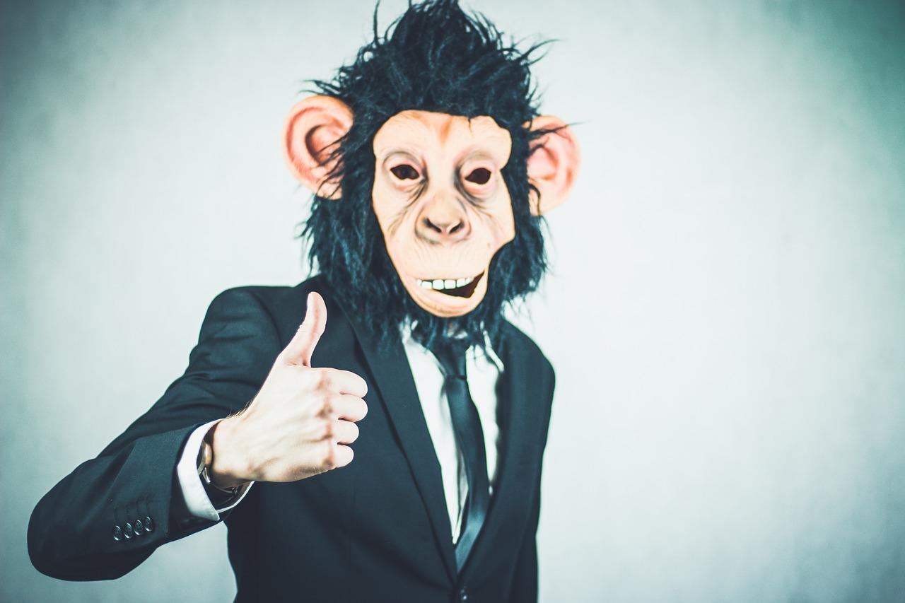 monkey-thumbs-up
