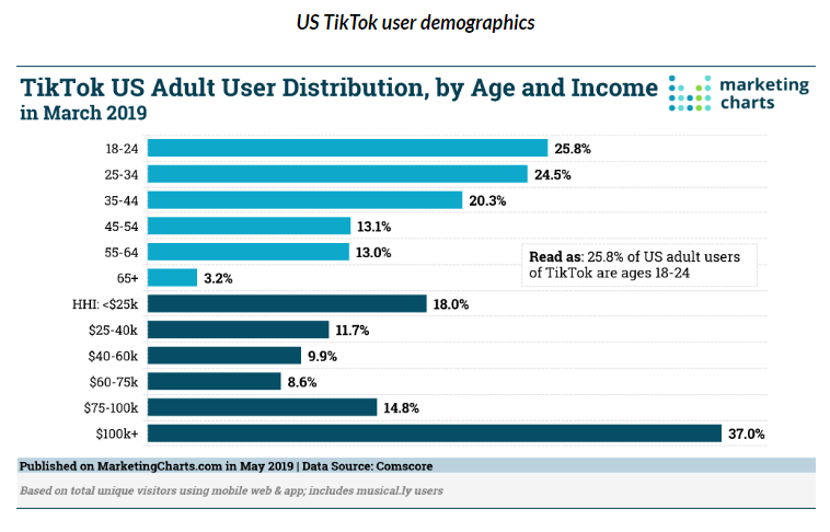 TikTok users by age and income